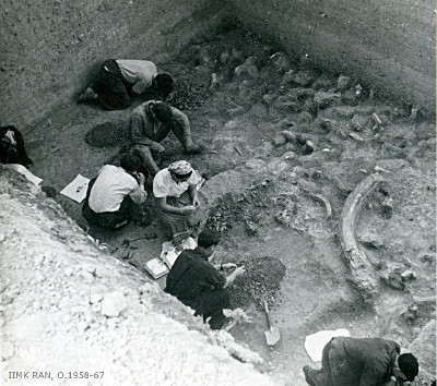 Kostënki 17 under excavation in the 1950s. Kostënki 17 is one of the sites we have recently studied.