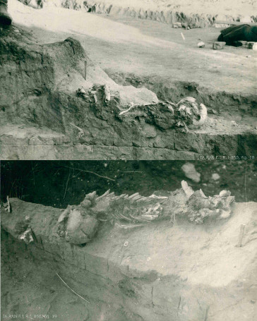 The c.28,000-year-old child burial at Kostënki 18 (Image: IA RAN F.1 R.1 850, fig. 18/19)